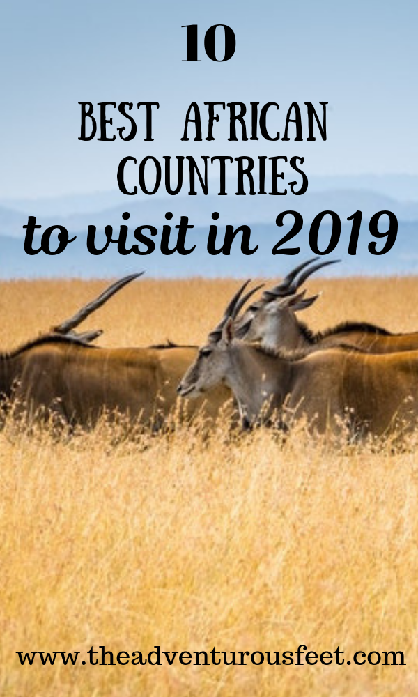 Traveling to Africa? Here is the list of the 10 best African countries to visit in 2019. #africansafari #countriestovisitinafrica #bestafricancountry #bestafricansafari
