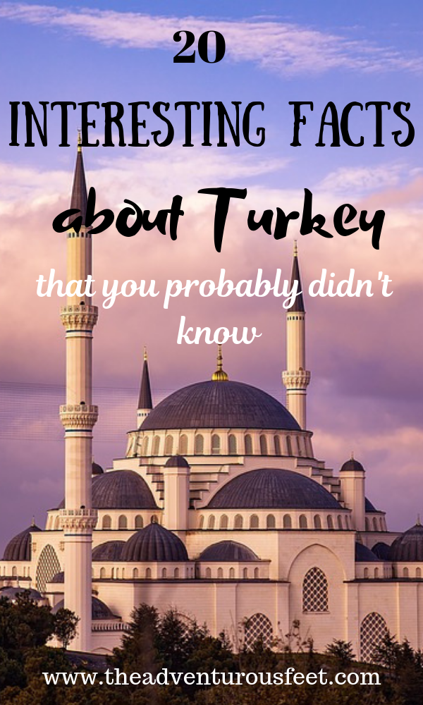 Turkey is beautiful country full of history, culture, and friendly people but there is to that.Here are the fun facts about Turkey that you probably didn't know. #turkeyfacts #knowaboutturckey #interestingfactsaboutturkey #whatyoudidntknowaboutturkey