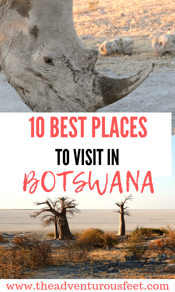 Traveling to Botswana? Here are some of the best places to visit in Botswana that every safari lover should go to. #botswanatravel #thingstodoinbotswana #botswanawildlife #whattodoinbotswana #okavangodelta