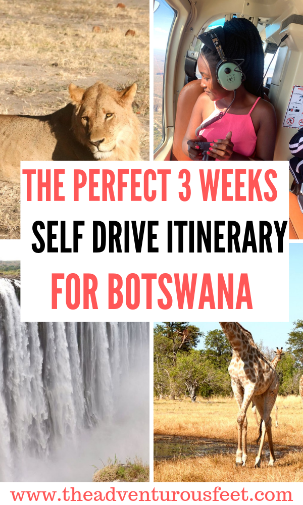 Are you planning to stay in Botswana for 3 weeks? Here is the perfect self drive itinerary in Botswana
