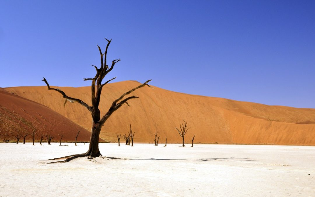 Namib desert is one of the exciting African adventures to experience