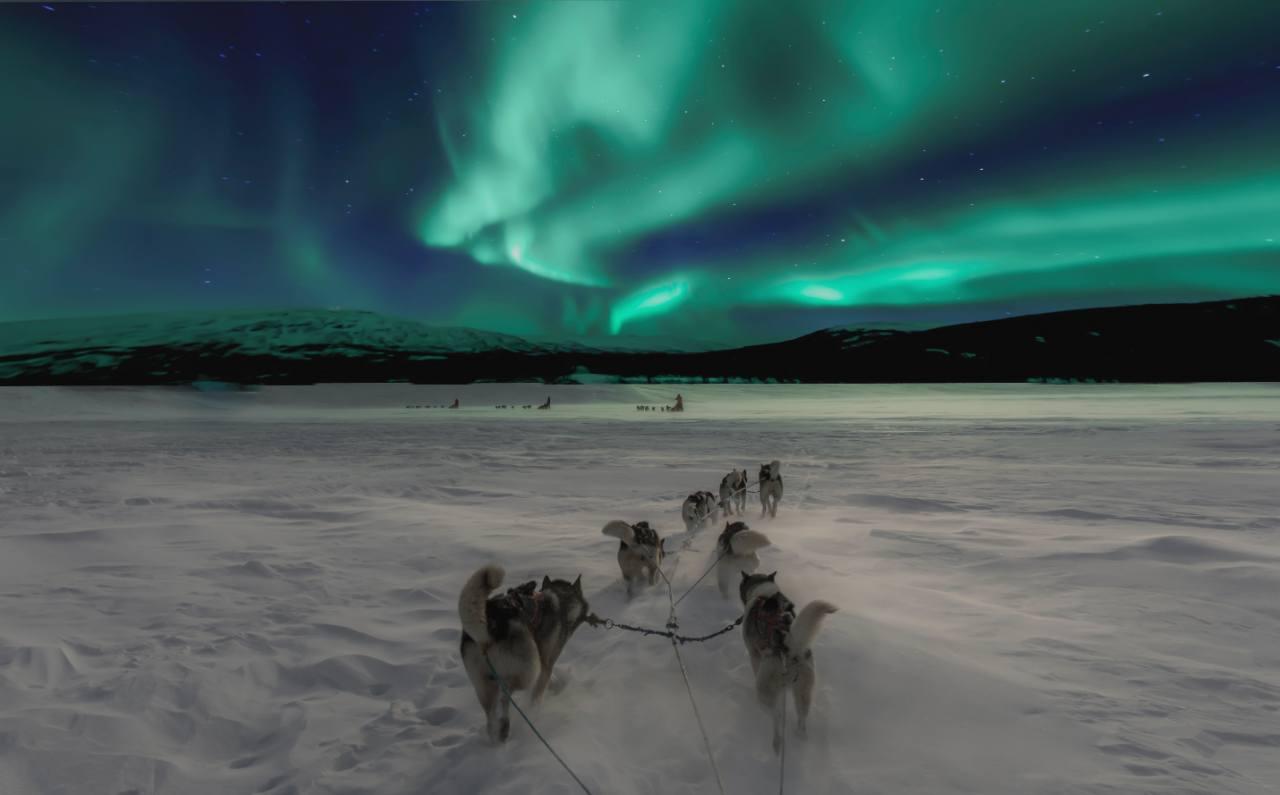 northern lights in norway (1)