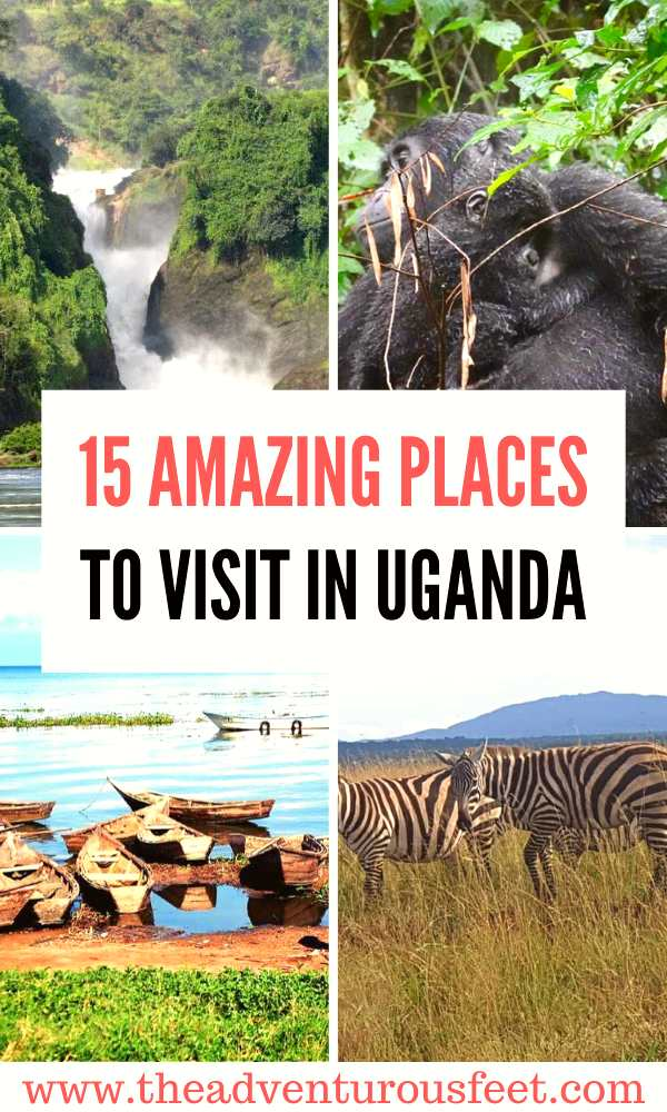 Traveling to the pearl of Africa? Here are the best places to visit in uganda. | top tourist attractions in uganda | things to do in uganda | beautiful places in uganda | safari destinations in uganda #touristattractionsinuganda #bestplacestovisitinuganda #nestnationalparksinuganda #theadventurousfeet