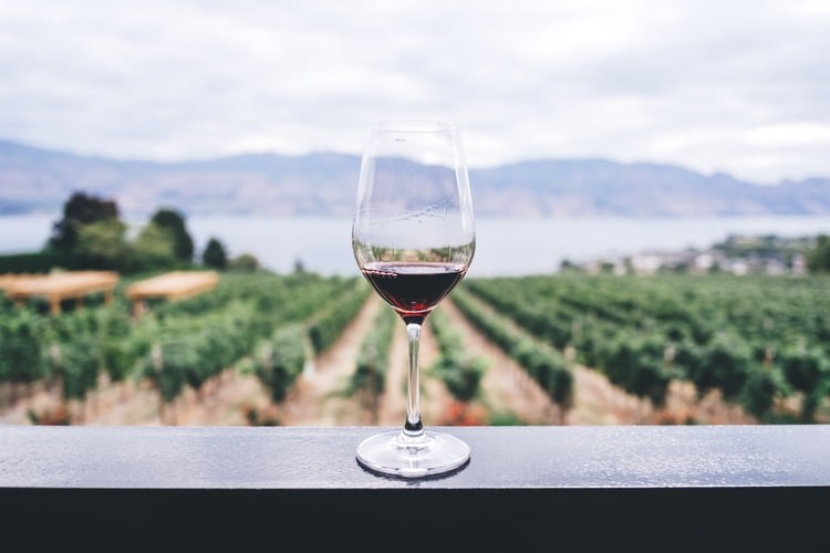 wine tasting tour in Valencia