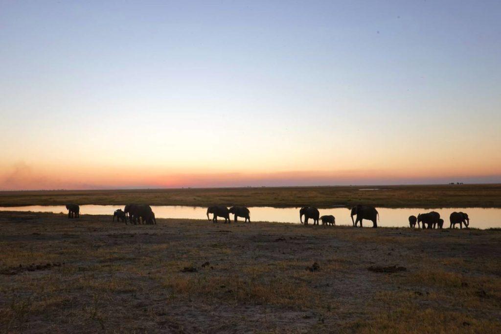 africa backpacking safari