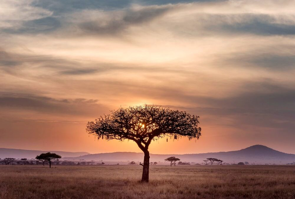 big mistakes to avoid while traveling in Africa